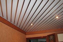 Дизайн потолка из пластиковых панелей